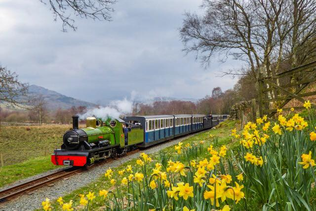 Optimized-160406-River-Irt-and-Daffodils-at-Murthwaite-HAlt
